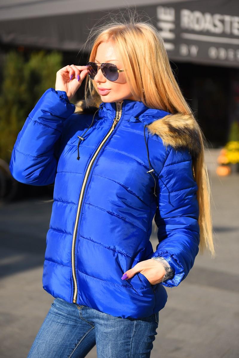 модные пуховики осень зима 2018 2019: куртка короткая синяя спортивная